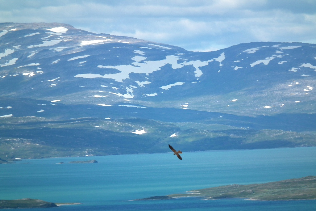 Staloluokta, Lappland